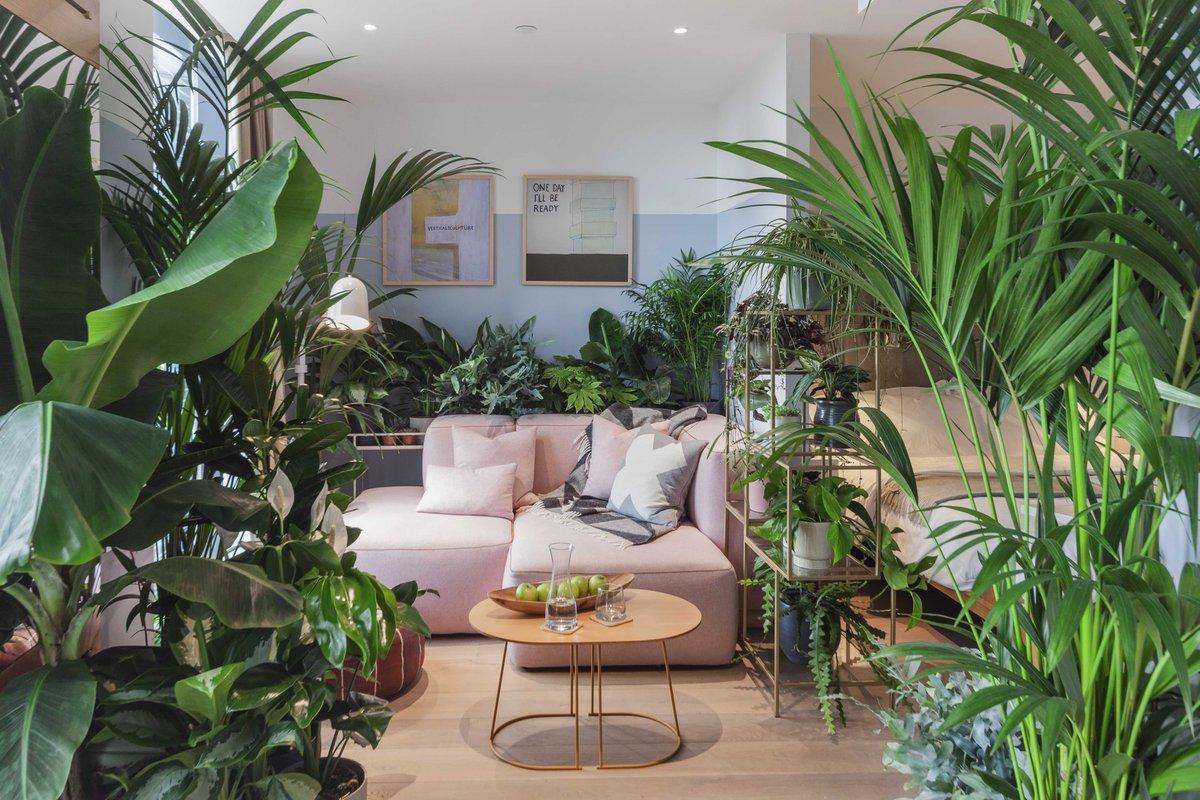 Làm thế nào để đưa thiên nhiên vào trong căn hộ?