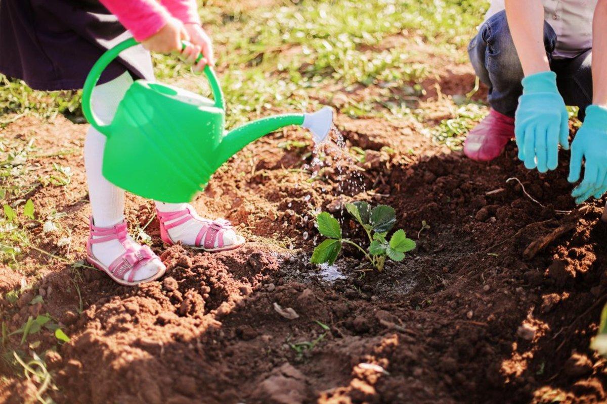 Bài học đơn giản giáo dục ý thức bảo vệ môi trường cho trẻ em
