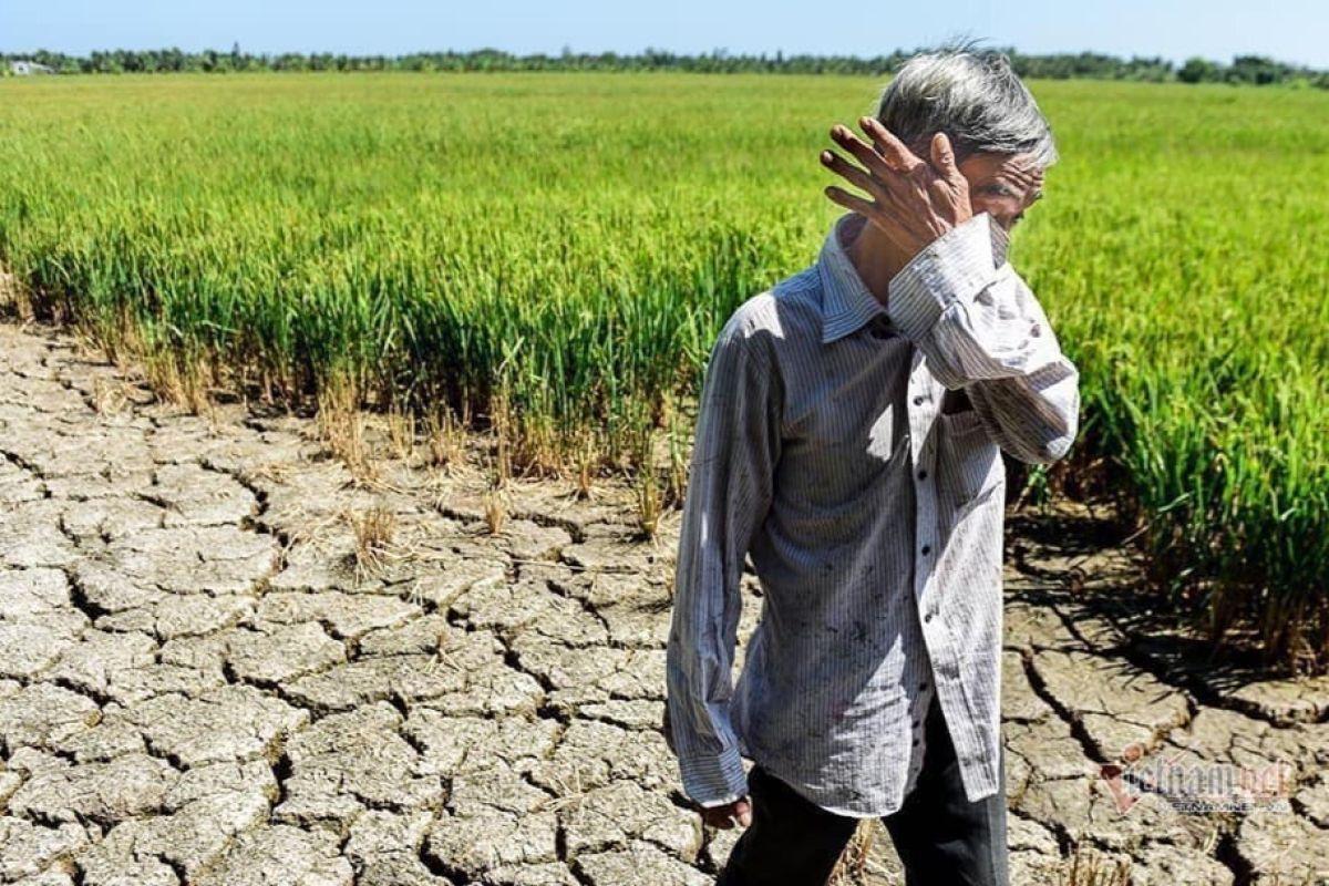 Đồng bằng sông Cửu Long ngập mặn: Đừng đổ lỗi cho Trung Quốc nữa