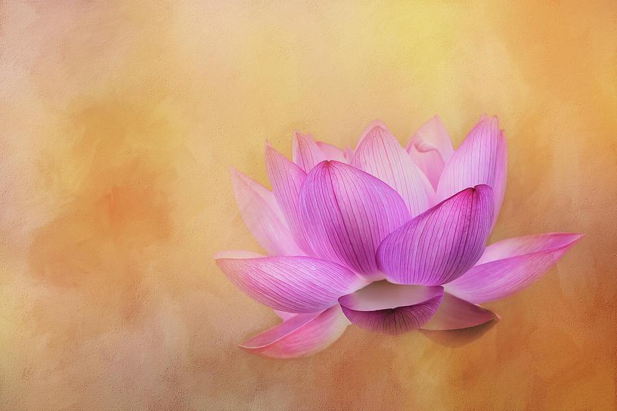 Di sản văn học của Phật hoàng Trần Nhân Tông