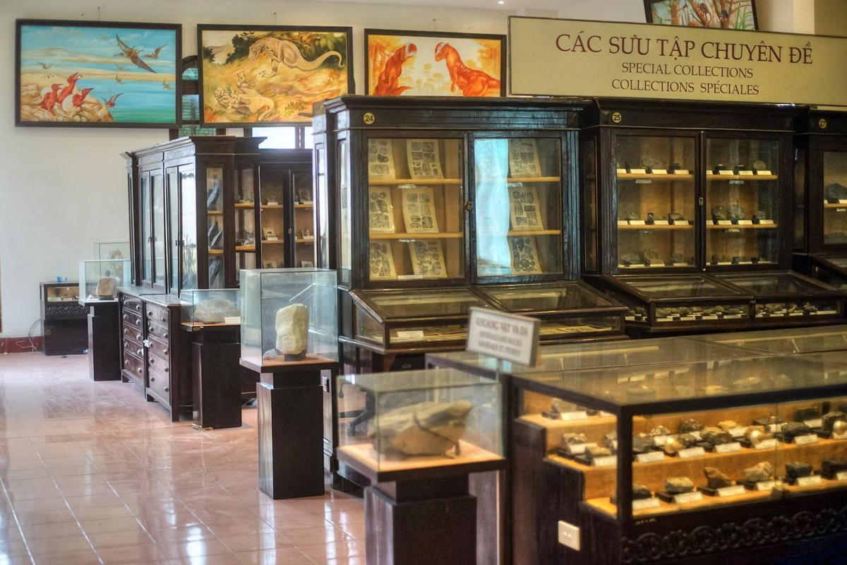 Chùm ảnh: Những điều lý thú trong Bảo tàng Địa chất ở Hà Nội