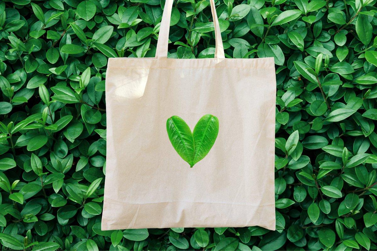 Cách chuẩn bị một chiếc túi 'xanh' để xây dựng một thế giới 'sạch'