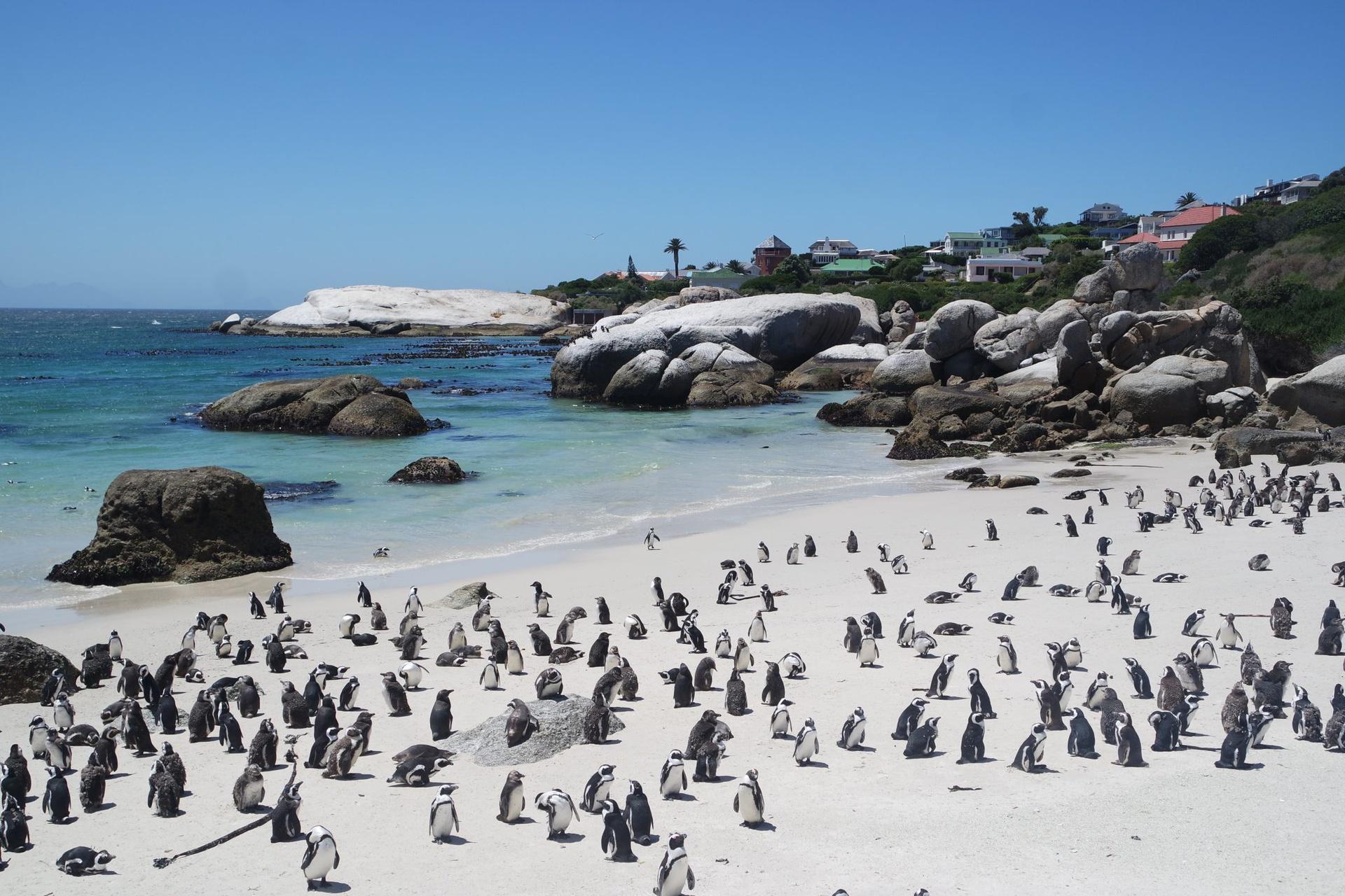 Chùm ảnh: Những bãi biển kỳ lạ nhất trên thế giới
