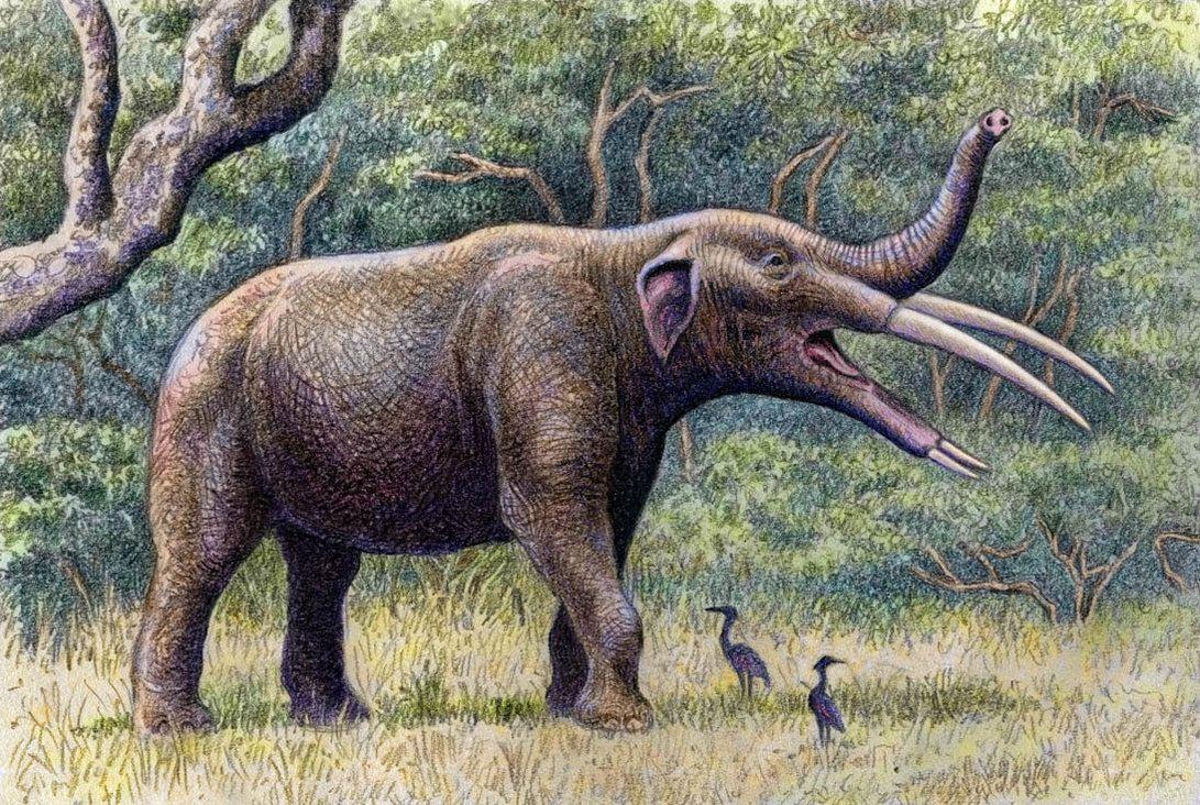 Chùm ảnh: Những loài vật ấn tượng nhất kỷ nguyên hậu khủng long