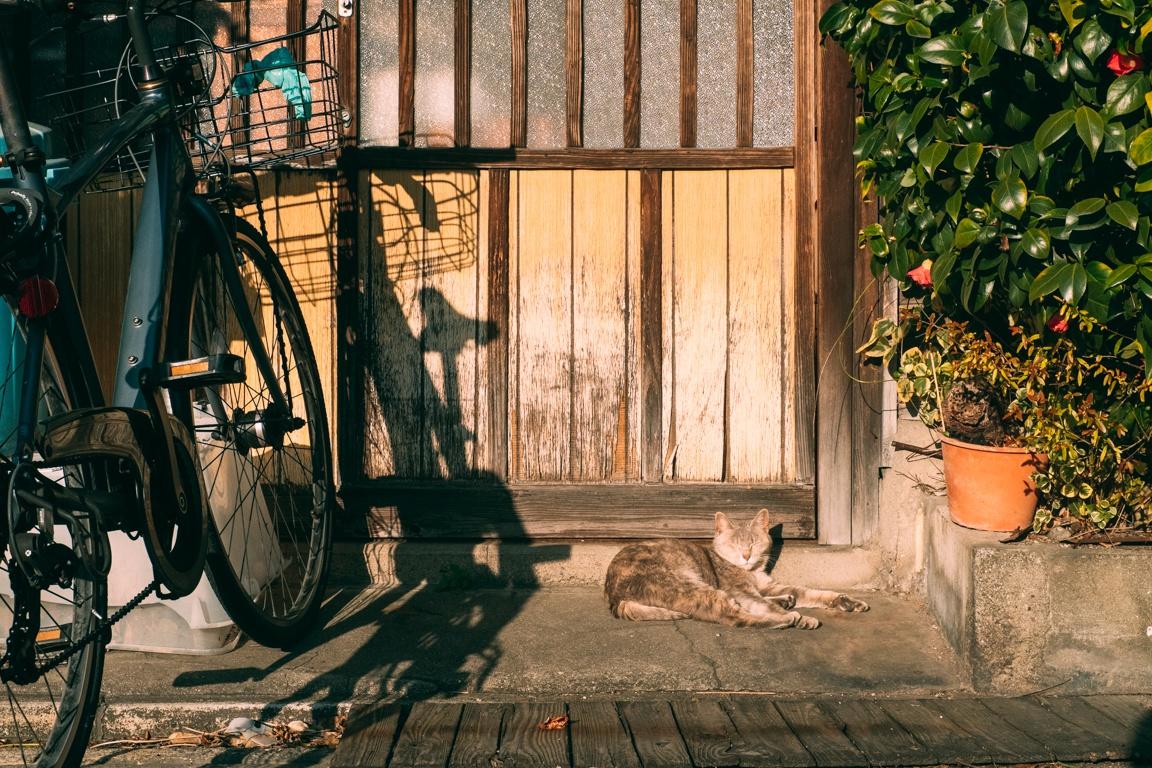 Chùm ảnh: Một ngày về thăm vùng đồng quê Nhật Bản