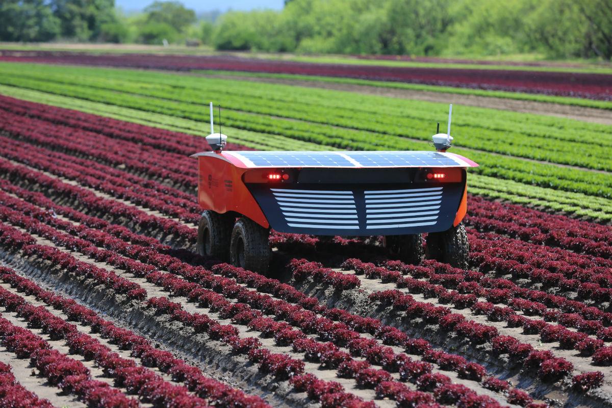 Robot nông trạivà hai thái cực của nền nông nghiệp tương lai