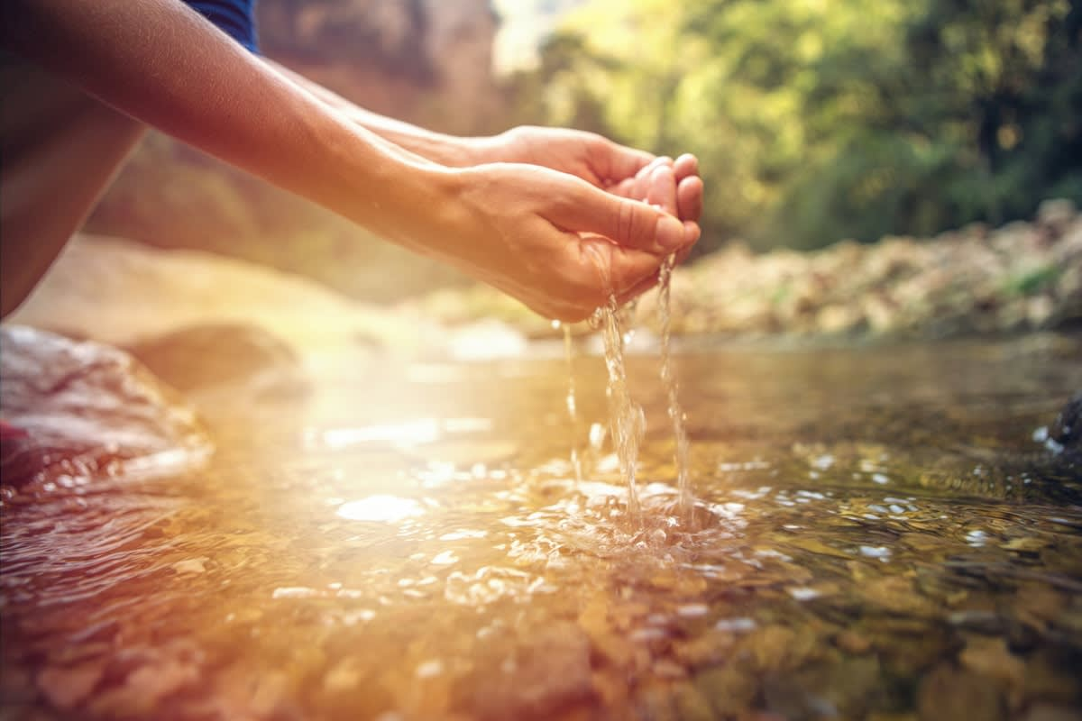 Bảo vệ môi trường sống giúp ngừa bệnh tật như thế nào?