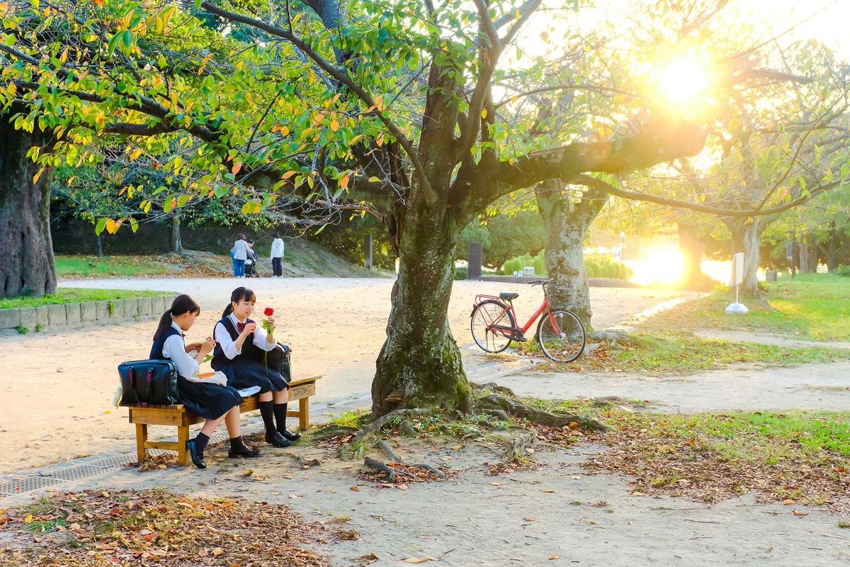 Chùm ảnh: Nhật Bản đẹp mơ màng thời khắc chuyển mùa sang thu