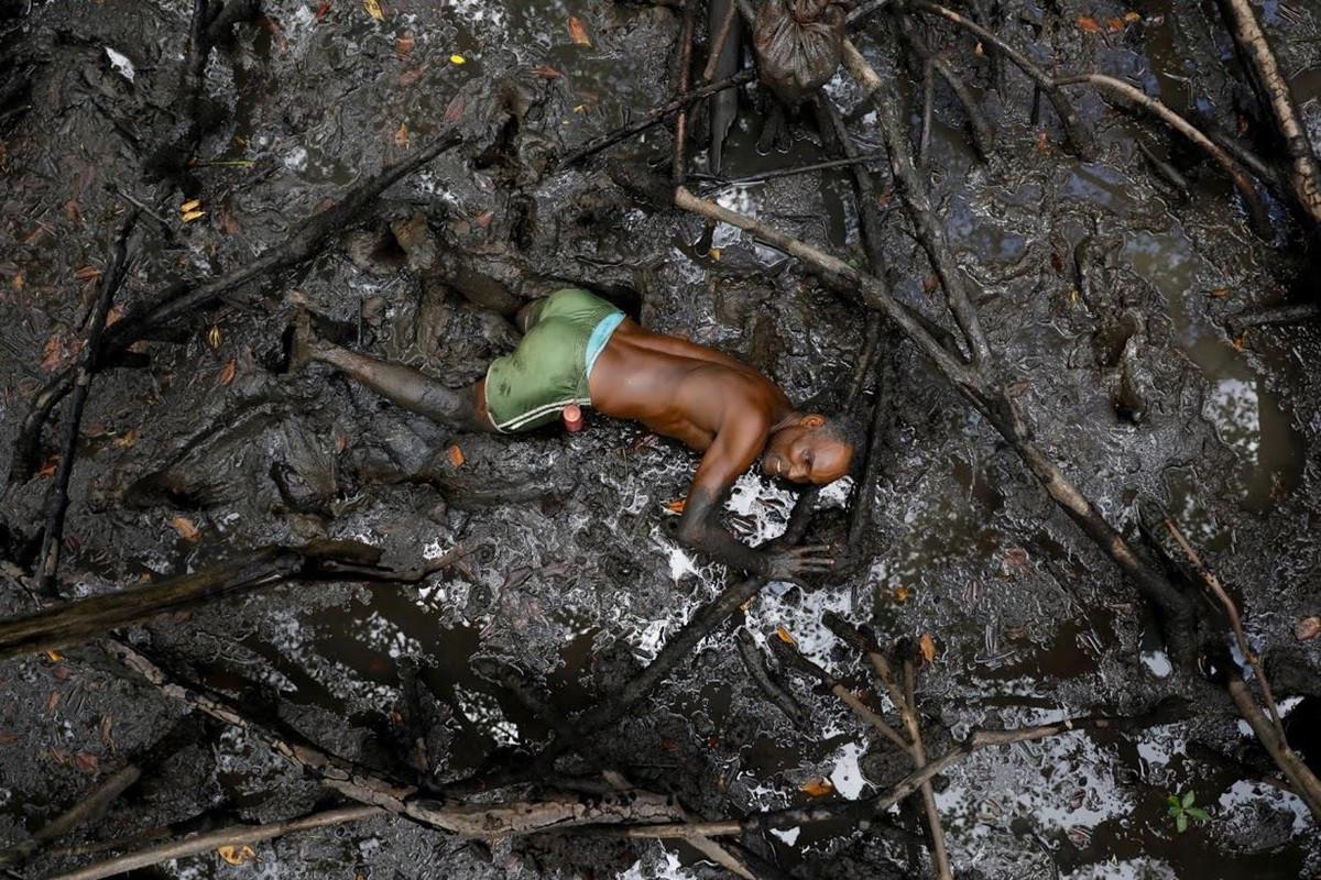 Chùm ảnh: Cư dân rừng ngập mặn Brazil đương đầu với biến đổi khí hậu