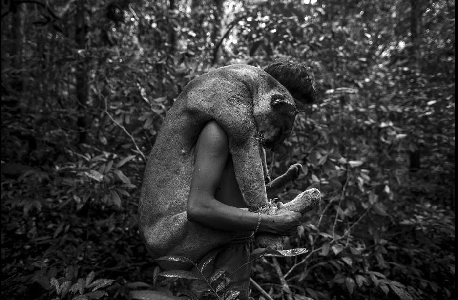 Chùm ảnh: Cuộc sống của người Awa – bộ lạc ít người nhất trái đất